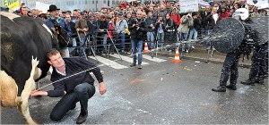 Evropski kmetje pridejo svoje nestrinjanje s SKP izraziti tudi v Bruselj. In to zelo nazorno. Vir: nytimes.com