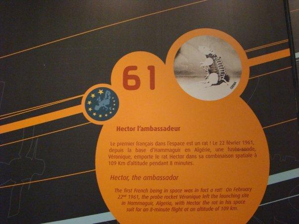 Hektor - francoska podgana je verjetno prvi Evropejec, ki se je podal v vesolje. Foto:ŠM